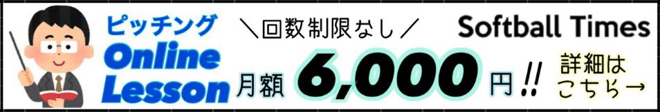 ウィンドミル横長バナー6000円