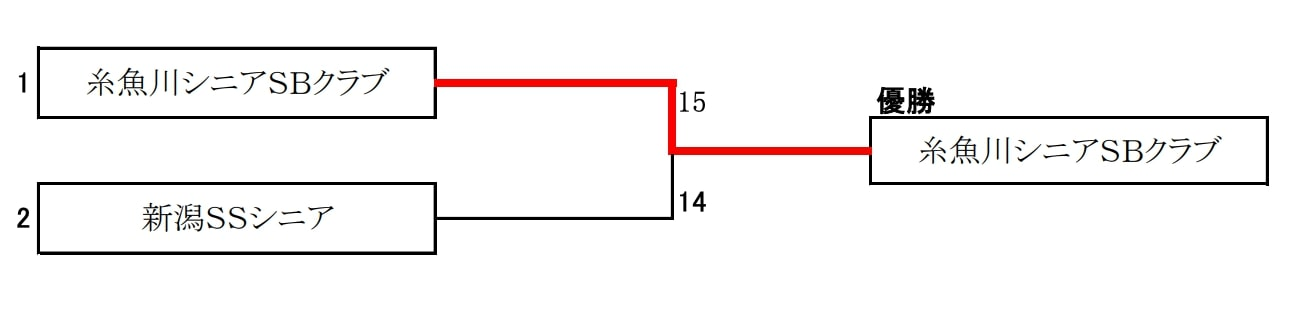 【新潟県ソフトボール】第35回全日本シニアソフトボール選手権大会新潟県予選会 結果